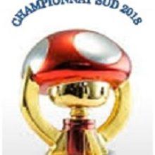 Remise des prix Championnat du Sud